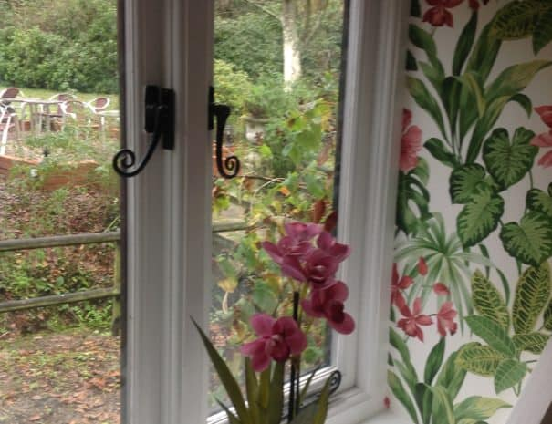 Hallway Orchid